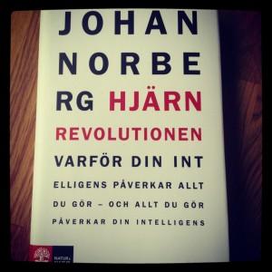 Hjärnrevolutionen